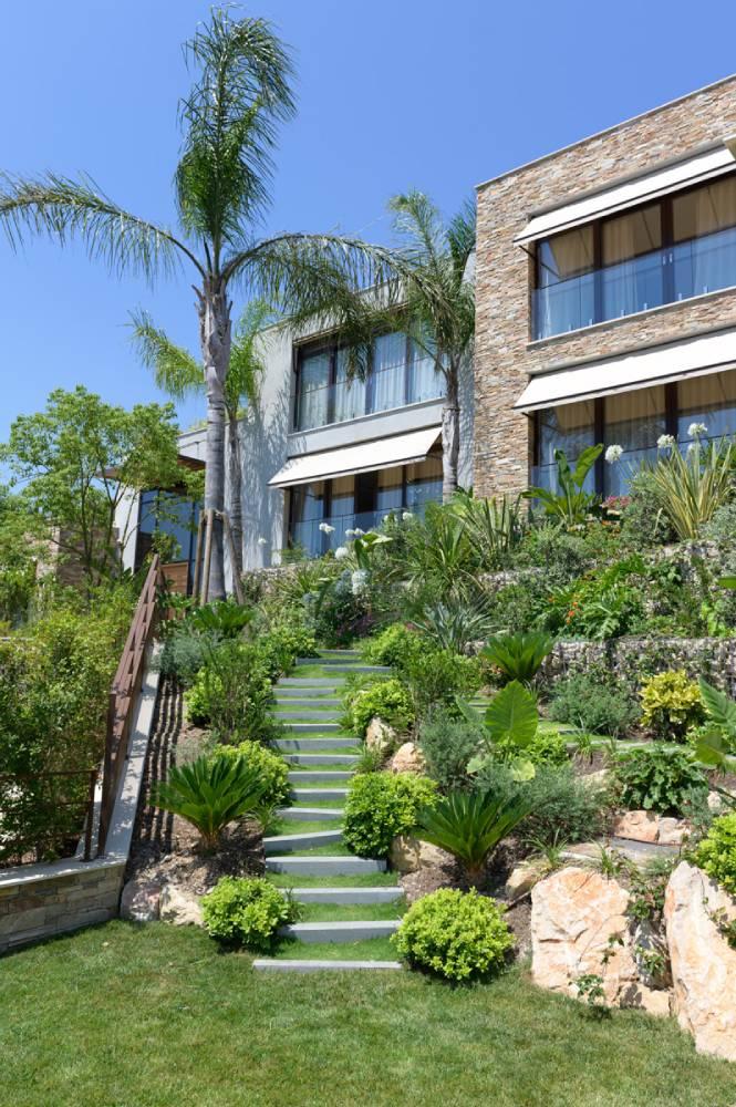 Maison avec palmier et jardin, photo d'entreprise prise par Florence Martin, photographe professionnelle dans le Var et les Alpes Maritimes