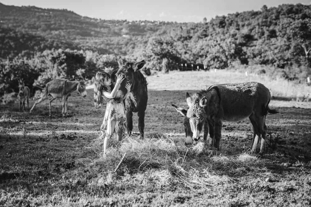 Photo d'une fillette dans un champs avec des ânes prise par Florence Martin photographe professionnelle dans le Var et les Alpes Maritimes
