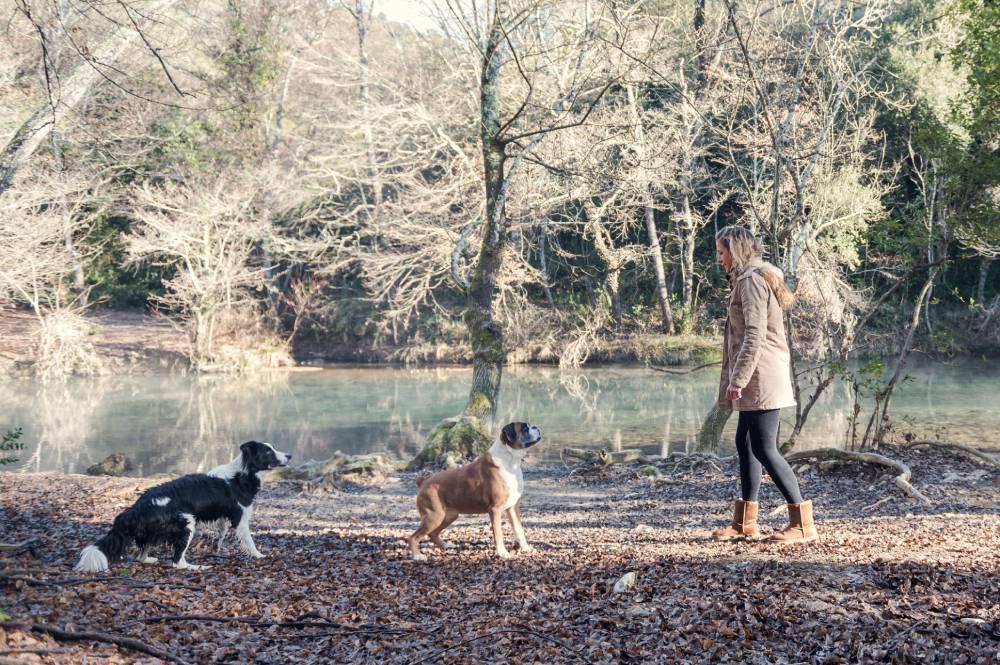 Une femme se promène dans la forêt avec ses 2 chiens photo prise par Florence Martin photographe professionnelle dans le Var et les Alpes Maritimes